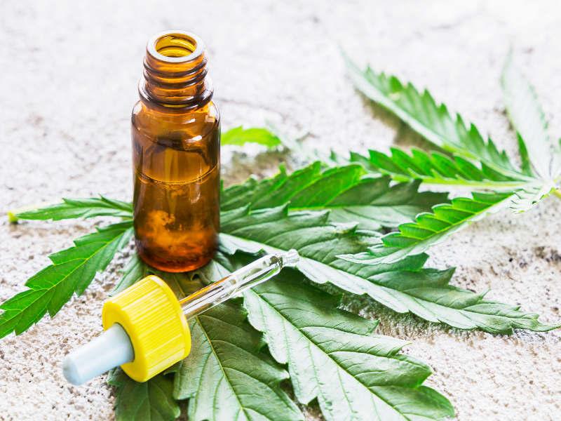 Hemp CBD vs Marijuana CBD, What are the differences?